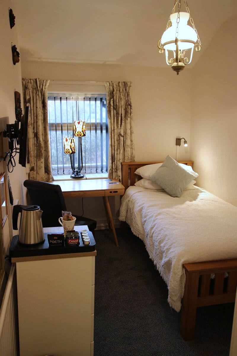 Image of Greylands Guesthouse Llandrindod Single Room Skylark 019